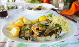 Grilled mackerel with rice and potatoes royalty free stock image
