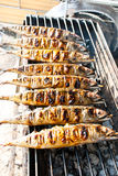 Grilled mackerels on the grill Stock Image