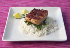 Grilled Mahi Mahi Royalty Free Stock Photos