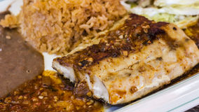 Grilled Mahi mahi Royalty Free Stock Images