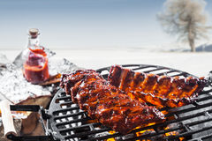 Grilled marinated spare ribs on a barbecue Royalty Free Stock Photo
