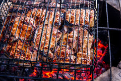 Grilled meat. On a barbecue with the firewood and charcoal Stock Photos