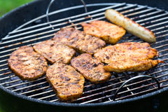 Grilled Meat,Barbecue in the Garden Royalty Free Stock Image