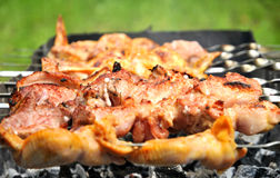 Grilled meat and chicken Royalty Free Stock Images