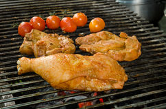 Grilled meat and chicken Royalty Free Stock Image
