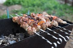 Grilled meat cooked on a grill with vegetables royalty free stock image