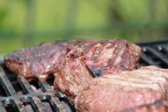 Grilled Meat during Daytime stock photos