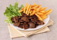 Grilled meat and fries Stock Image