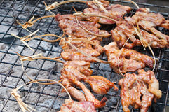 Grilled meat on the grating Stock Image