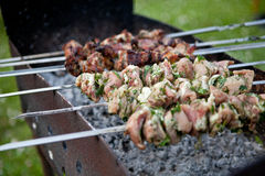 Grilled meat on the grill sticks Royalty Free Stock Image