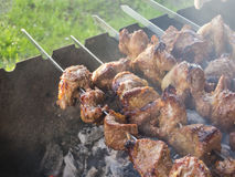 Grilled meat kebab Royalty Free Stock Images