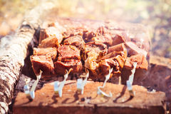Grilled Meat mutton kebab barbecue healthy organic fresh food Stock Images