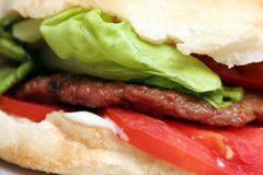 Grilled meat patty, hamburger Stock Images