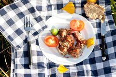 Grilled meat pieces with vegetables Royalty Free Stock Image