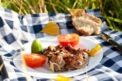 Grilled meat pieces with vegetables Stock Images