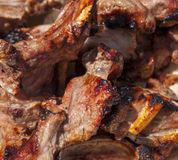 Grilled meat on pita. Close up. Stock Image