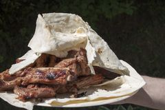 Grilled meat on pita. Royalty Free Stock Photography