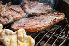 Grilled meat, pork, beef and chicken meat on barbecue, grill Royalty Free Stock Image
