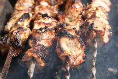 Grilled meat on a skewer Royalty Free Stock Images