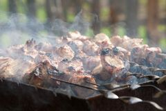 Grilled meat on a skewer Royalty Free Stock Image