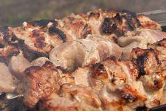 Grilled meat on the skewer Stock Photo