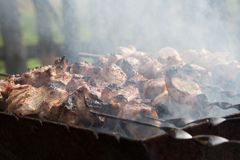 Grilled meat on a skewer Royalty Free Stock Photography