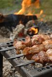 Grilled meat on skewers Royalty Free Stock Images