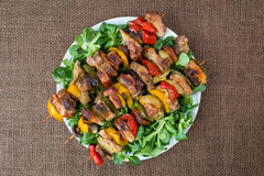 Grilled meat skewers on plate with vegetables Stock Image
