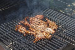 Grilled meat in special fixture. Stock Photography