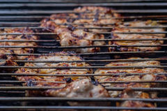 Grilled meat. On a  summer picnic Royalty Free Stock Images