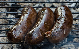 Grilled meat. In summer time royalty free stock photos