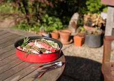 Grilled meat is on the table royalty free stock images