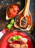 Grilled meat  with tomato sauce and spices Stock Photography