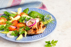 Grilled meat with vegetable salad Stock Photography