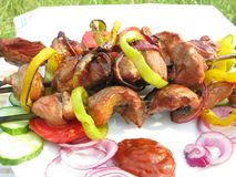 Grilled meat with vegetables Stock Images