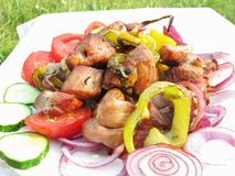 Grilled meat with vegetables Royalty Free Stock Images