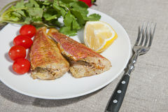 Grilled Mediterranean red mullet fish Royalty Free Stock Image