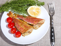 Grilled Mediterranean red mullet fish Stock Photography