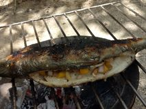 grilled milkfish Stock Images