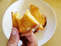 Grilled mozzarella cheese sandwich Stock Photography
