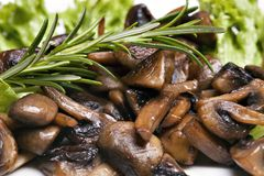 Grilled mushrooms. Champignon on salat Stock Images