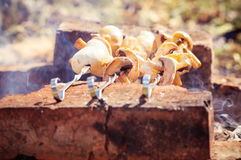 Grilled mushrooms Champignon kebab barbecue Royalty Free Stock Photography