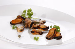 Grilled mussel Stock Images