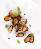 Grilled mussel Royalty Free Stock Images