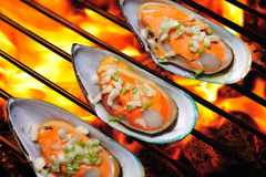 Grilled mussels Royalty Free Stock Photos