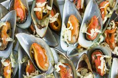 Grilled Mussles. Yummy grilled mussles with cheese Royalty Free Stock Image