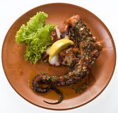 Grilled octapus. A plate with a grilled octapus for dinner royalty free stock image