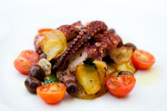 Grilled octopus. With cherry tomatoes Stock Photos