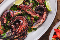 Grilled octopus dish Royalty Free Stock Photography