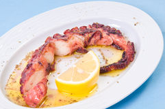 Grilled octopus with lemon sauce. Stock Image